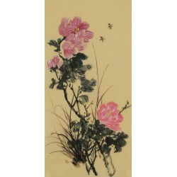 Hibiscus - CNAG001000