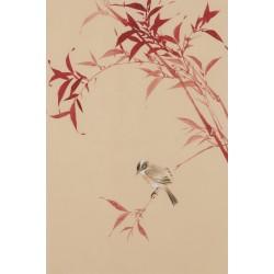 Bamboo - CNAG001040