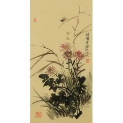 Narcissus - CNAG001070