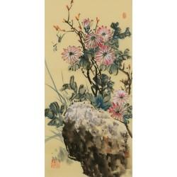 Chrysanthemum - CNAG001075