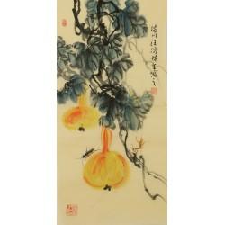 Gourd - CNAG001082