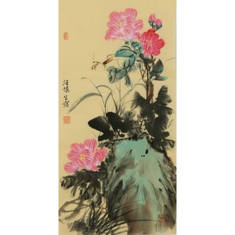 Hibiscus - CNAG001086