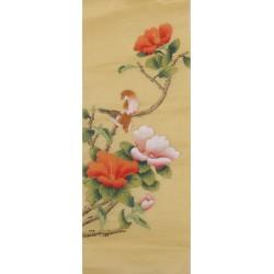 Hibiscus - CNAG001087