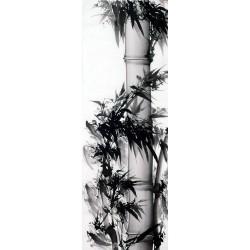 Chinese Ink Bamboo Painting - CNAG011954