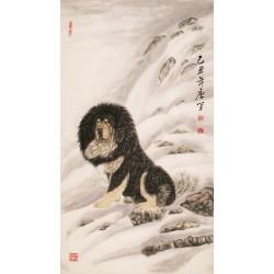 Dog - CNAG000013