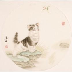 Cats - CNAG001465