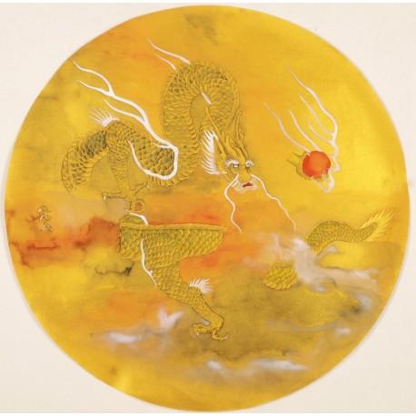 Dragon - CNAG001558