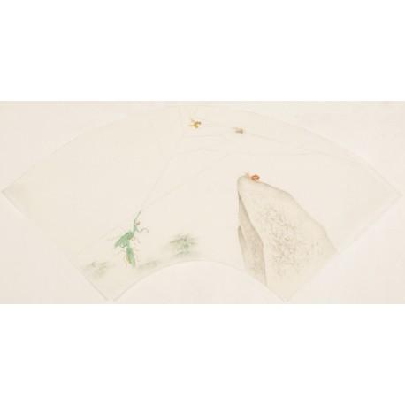 Mantis - CNAG001560