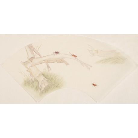 Bamboo - CNAG001600