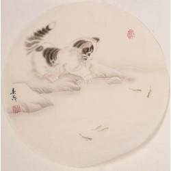 Cats - CNAG001615