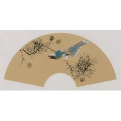 Paradise Flycatcher - CNAG001670