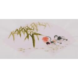 Mandarin Duck - CNAG001688