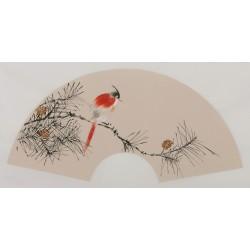 Paradise Flycatcher - CNAG001693
