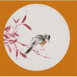 Bamboo - CNAG001724
