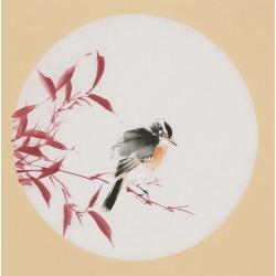 Bamboo - CNAG001739