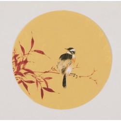 Bamboo - CNAG001768