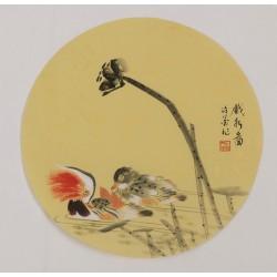 Mandarin Duck - CNAG001802