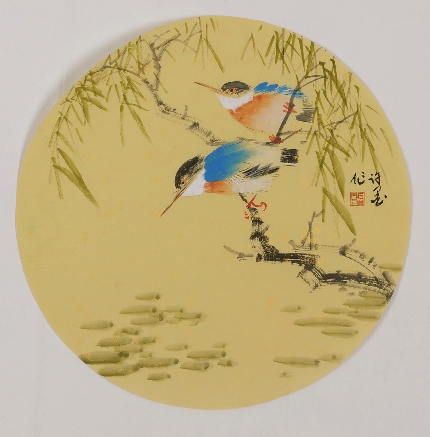 Willow - CNAG001803