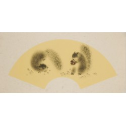 Squirrels - CNAG001844