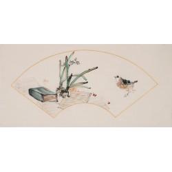 Narcissus - CNAG001863