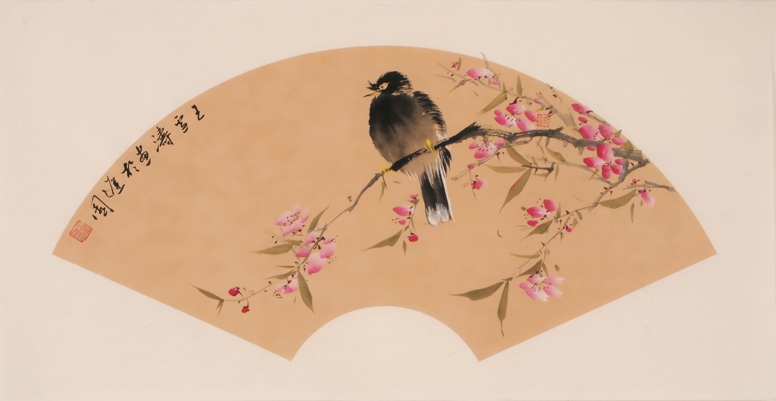 Starling - CNAG001895