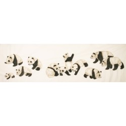 Panda - CNAG001943