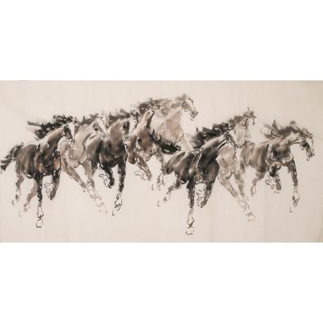 Horse - CNAG001996