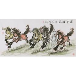 Horse - CNAG002022