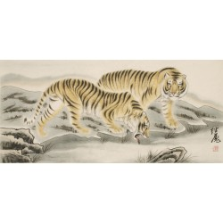 Tiger - CNAG002033
