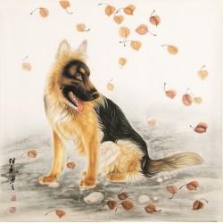 Wolf - CNAG002072