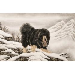 Dog - CNAG002083