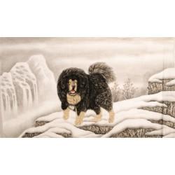 Dog - CNAG002085