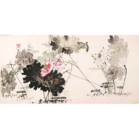 Kingfisher - CNAG003105