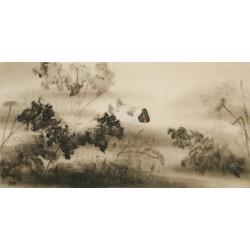 Ducks - CNAG003113