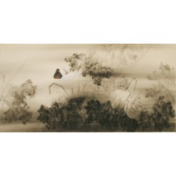 Ducks - CNAG003140
