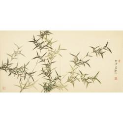 Bamboo - CNAG003156