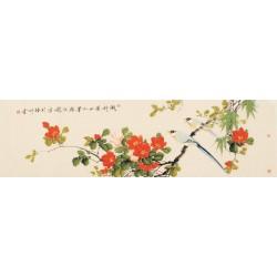 Hibiscus - CNAG003179