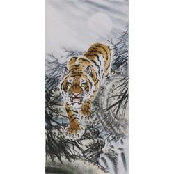 Tiger - CNAG000032