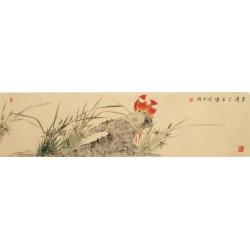 Orchid - CNAG003245