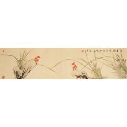 Orchid - CNAG003246