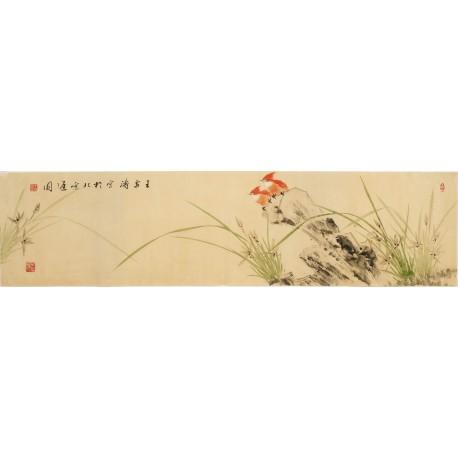 Orchid - CNAG003251