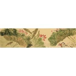 Mandarin Duck - CNAG003255