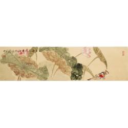 Mandarin Duck - CNAG003262