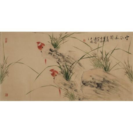 Orchid - CNAG003321