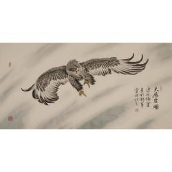 Eagle - CNAG003329