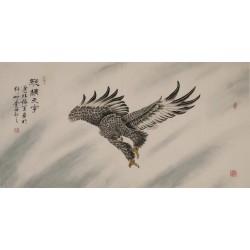 Eagle - CNAG003334