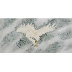 Eagle - CNAG003376