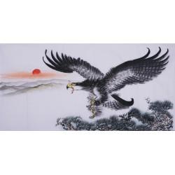 Eagle - CNAG003387