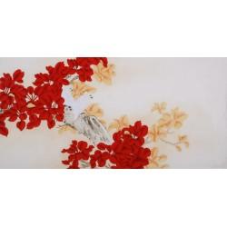 Parrot - CNAG003391