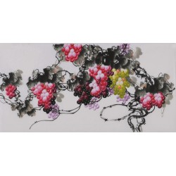 Grapes - CNAG003411
